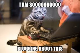 cat-blog-meme